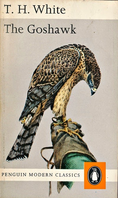 white_goshawk1970_engraving by brodrick