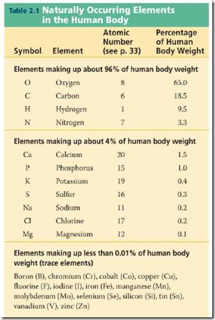 element_human_body