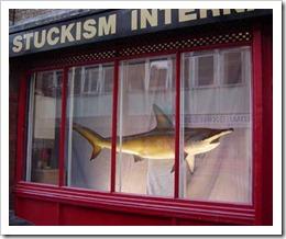 dead shark isnt art
