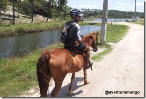 Cavalgada 2