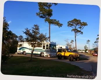 Ferd in Gulf Shores, Alabama