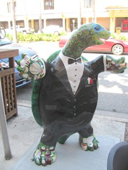 Florida Venice decorated tux turtle front1