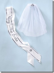 bride sash and veil