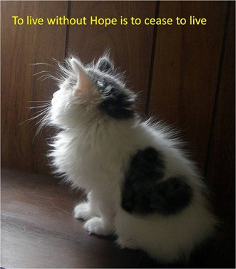 to live without Hope is to cease to live