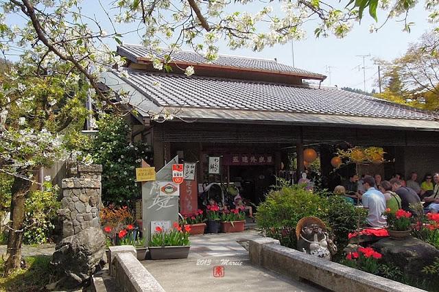 京都哲學之道櫻花