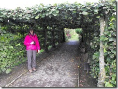 levens hall garden tunnel and me