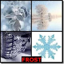 FROST- 4 Pics 1 Word Answers 3 Letters