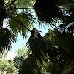 seychelles7_20070412_1395777048.jpg