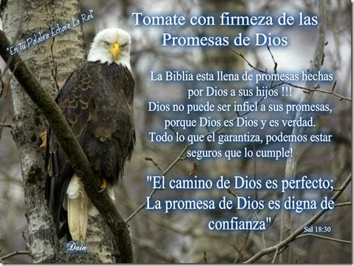 frasess cristianas airesdefiestas (1)