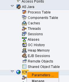 SAP MC show ICM parameters