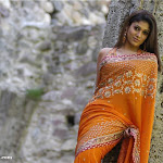 Nayanthara-Hot-Photos-68.jpg