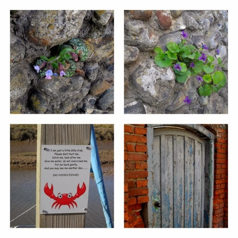 curiosities - violets and pulmonaria making their home in a flint wall - a sweet sign on Blakeney quay and an old door in Wells