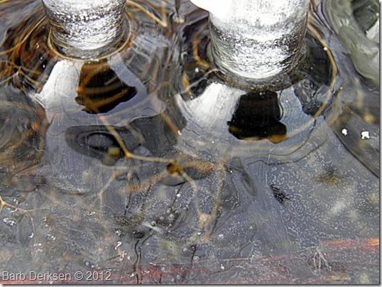Barb Derksen Ice 2012  (17)
