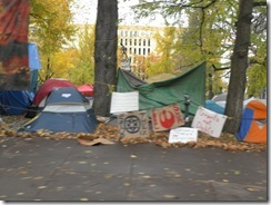 occupy PDX  12