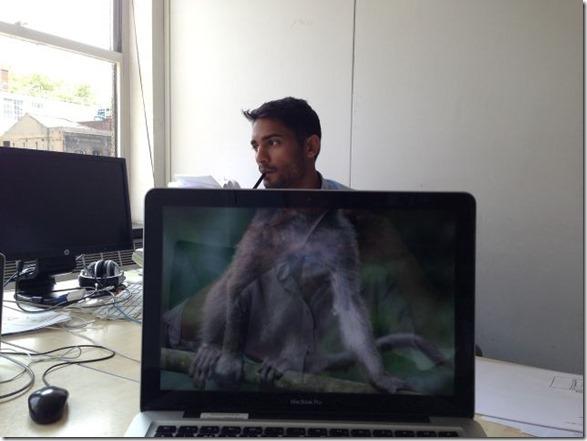 photobomb-coworkers-animal-7