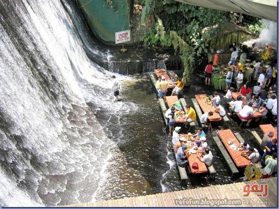 مطعم تحت الشلالات عالم ريفو