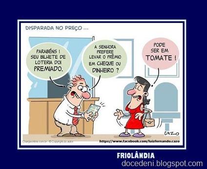 tomates23