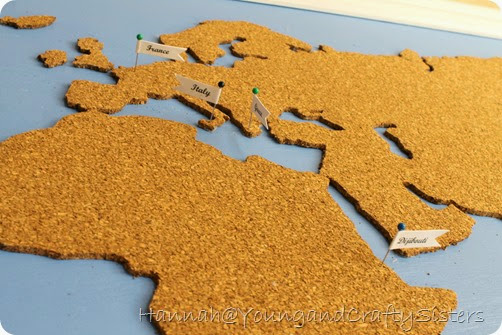 cork board world map 14