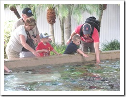 Florida vacation Epcot Rich Terry twins ronnie feeding rays 1