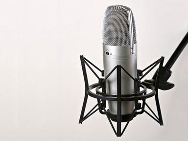 13612microfone