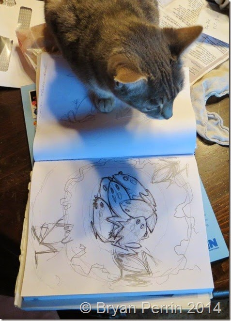 cat shadow on toad sketch journal
