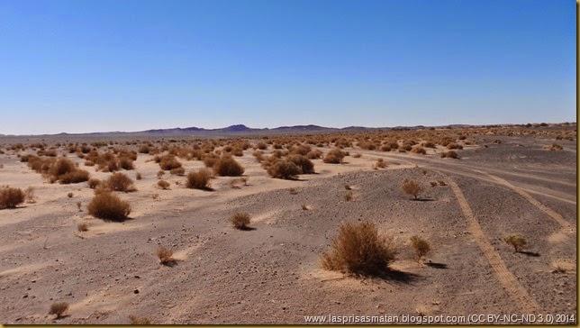Desierto-410