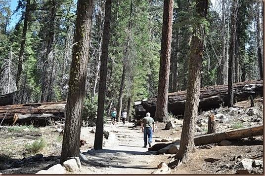 09-21-14 Yosemite 030