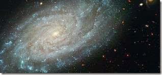 Spiral Galaxy NGC 3370_ Hubble Heritag