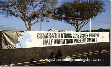 2015 runDisney Princess 10K (40)