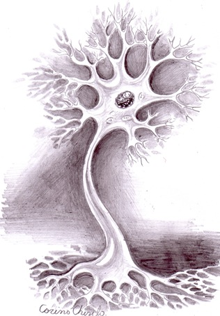 Arborele neuronal Neuron desent in creion - Neuron pencil drawing