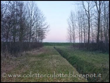 Passeggiata al Dosolo - 1 gennaio 2013 (62)