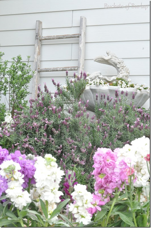 spring garden 2013-3