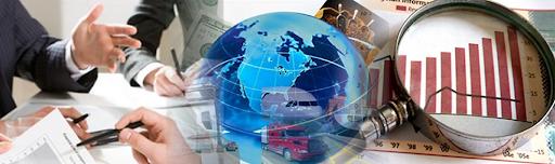 Vp foreign trade asesores en comercio exterior for Asesores exterior