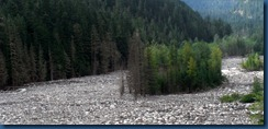 Mt. Rainier (17)