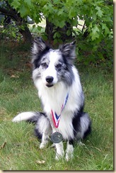 Dandy-Team Silver Medal-May2011