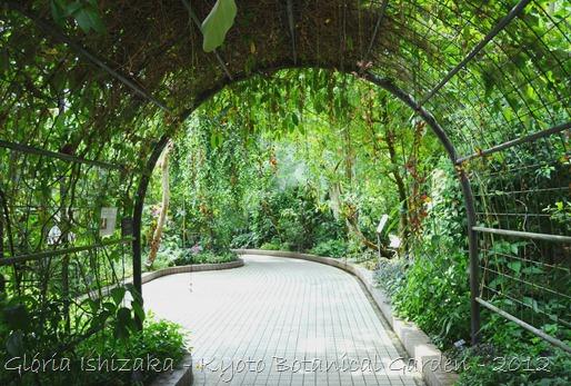 Gloria Ishizaka - Jardim Botanico de Kyoto 2012 - 11
