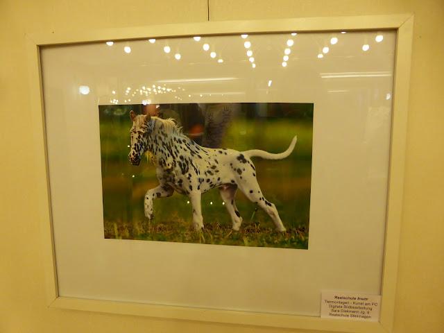 Tiermontagen - Kunst am PC - Digitale Bildbearbeitung - Sara Diekmann