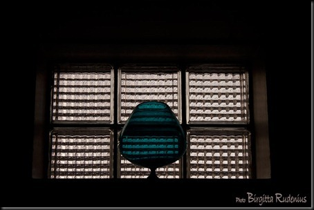 window_20120220_frigga