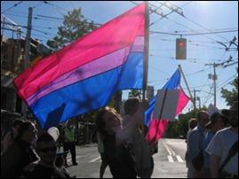 bandeira Bi