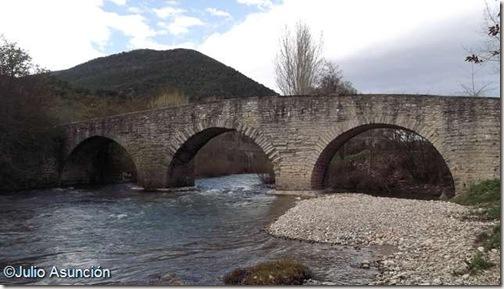 Puente de Sorauren - Navarra