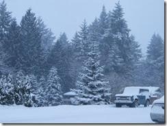 snow day 16
