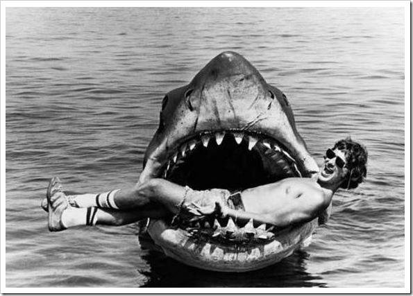 tubarão_3