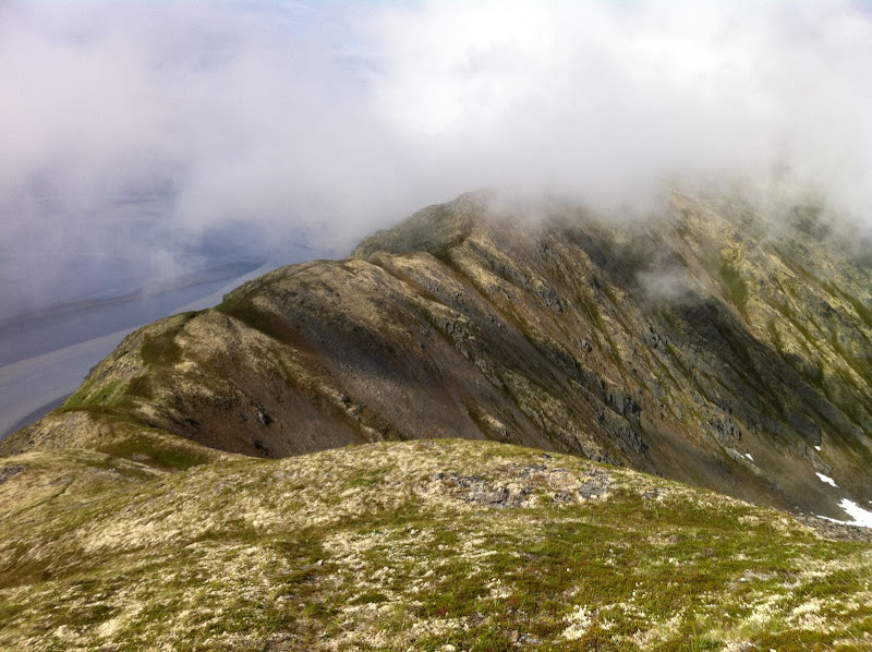 Penguin Ridge Hike - IMG_1222.JPG