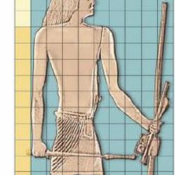 40 bis- Estudio del canon de los 18 puños en el relieve de Hesire
