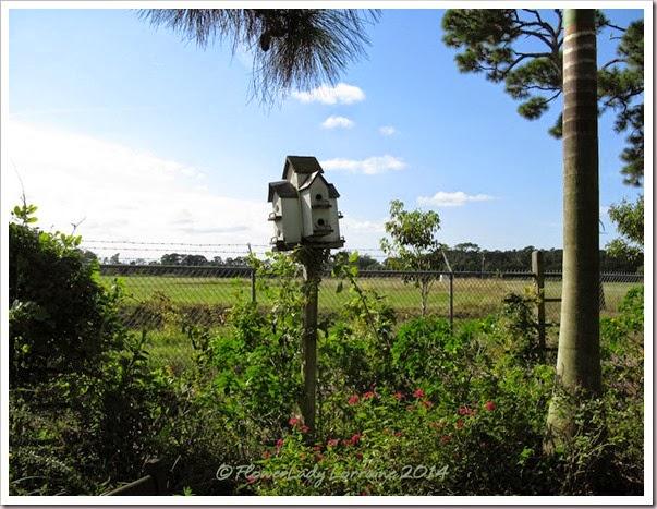 11-20-birdhouse