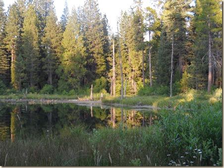 Lake Shasta 282