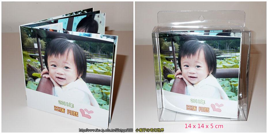 2011book02.jpg