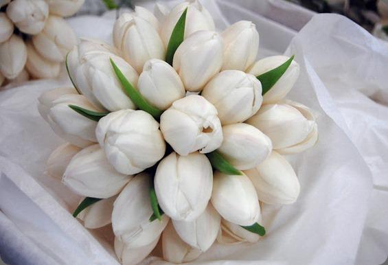 102_0648 mood flowers