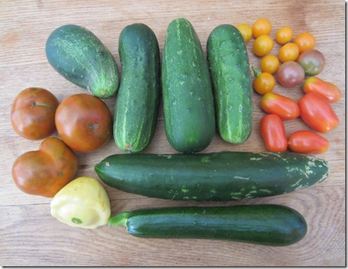 Black Krim tomatoes, cukes, and assorted cherry tomatoes