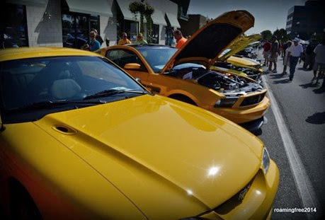Yellow Mustangs